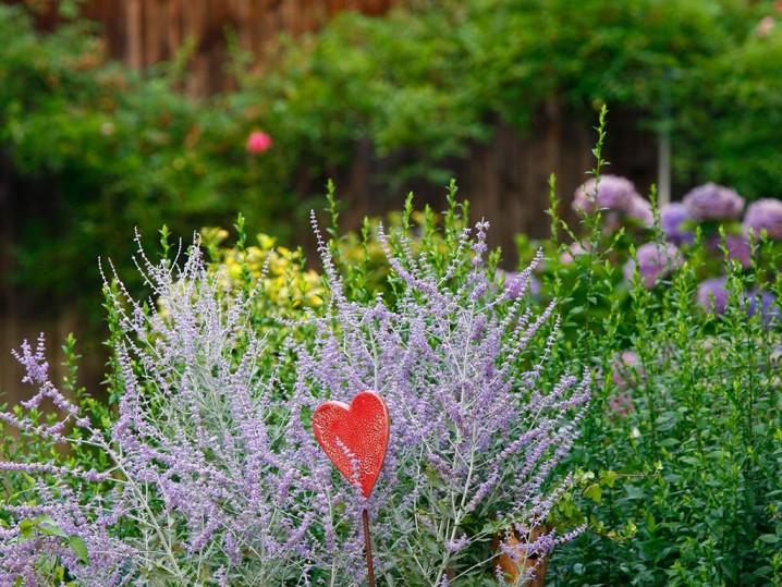 Blumen mit Herz