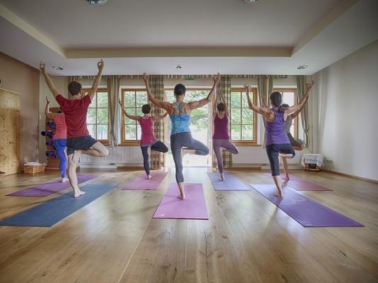 Yoga Anjali
