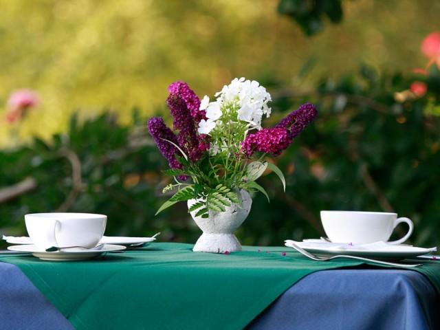Fr�hst�ckstisch im Garten